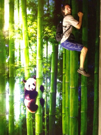 i left him with the pandas